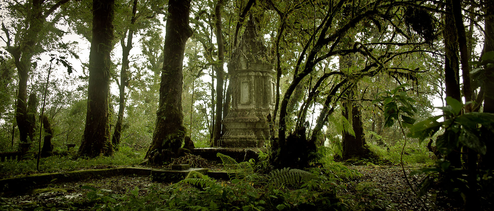 Doi inthanon jungle temple thailand